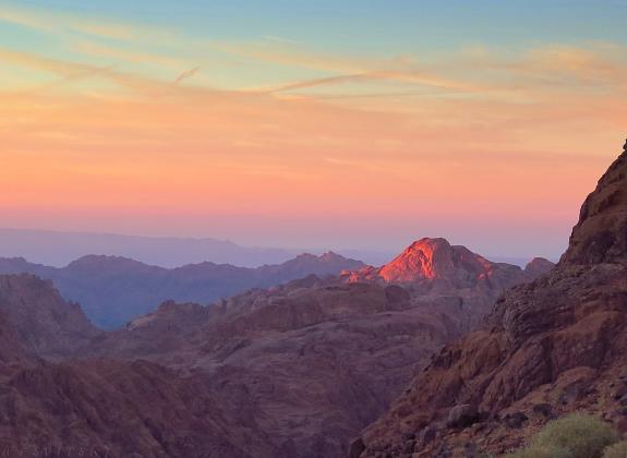 Неопалимая Купина — в камне с горы Синайской.